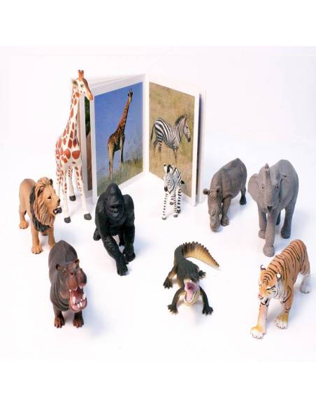 Cuento Imágenes Animales Salvajes en cartón  Libros para bebés
