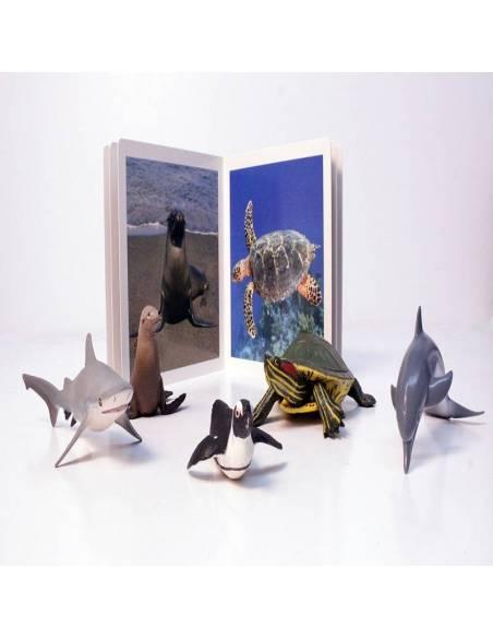 Cuento Imágenes Animales Marinos cartón  Libros para bebés