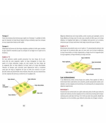 Libro pdf paso a paso Montessori