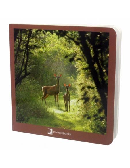 Cuento Imágenes Animales del Bosque cartón  Libros para bebés