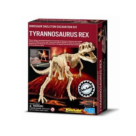 Excavación esqueleto de Tyrannosaurus Rex