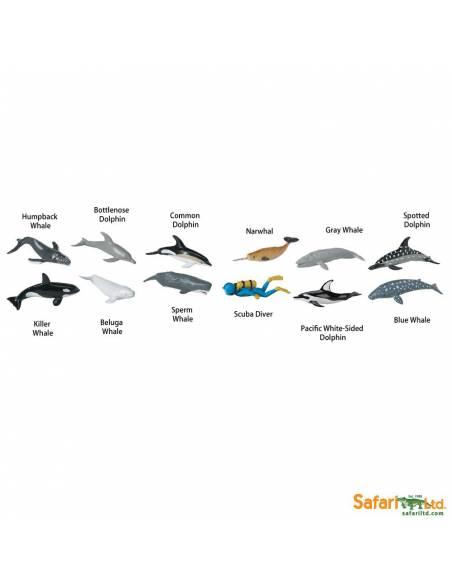Delfines y ballenas  Toobs Animales