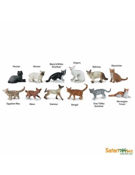 Gatos  Toobs Animales