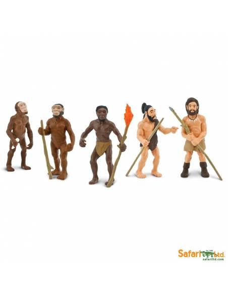 Evolución del hombre  Toobs Conoce el mundo