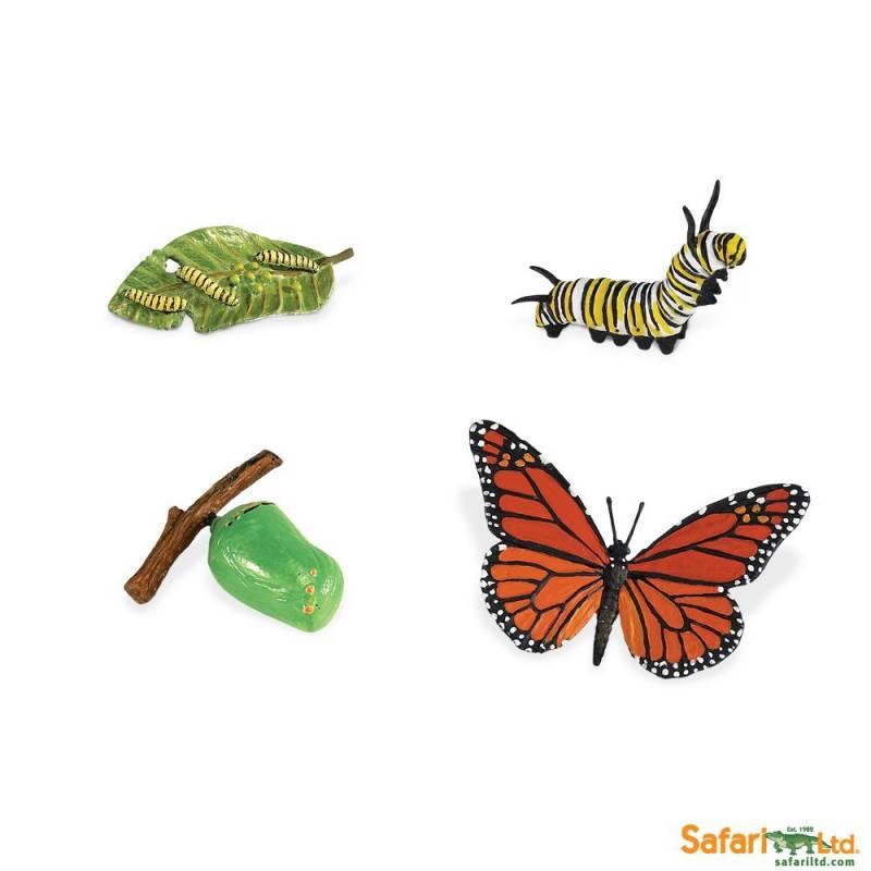 ... EDUCATIVOS > Safari LTD - Miniaturas > Ciclo de vida mariposa monarca