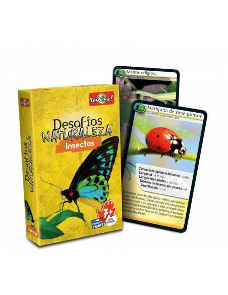 Bioviva - Cartas insectos  Juguetes