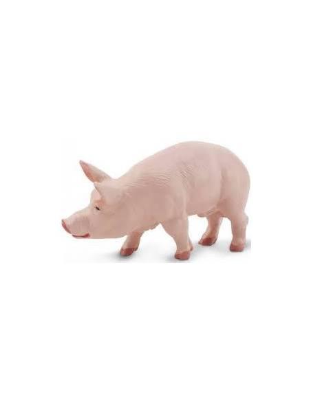 Cerdo  Animales Grandes