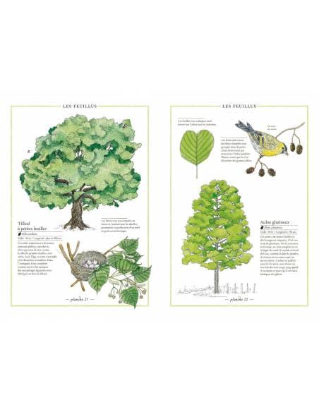 Inventario ilustrado de los árboles  Libros con Imágenes Reales