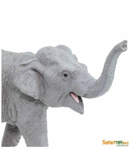 Elefante asiático  Animales Grandes
