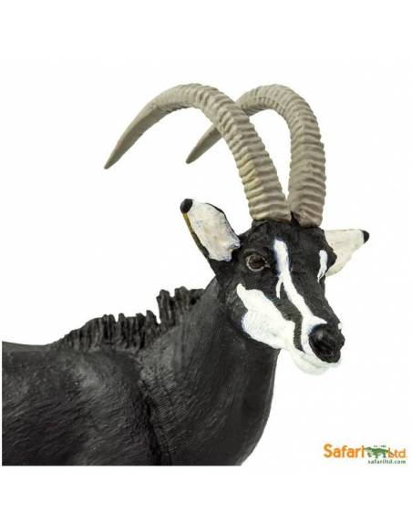 Cabra montesa  Animales Grandes