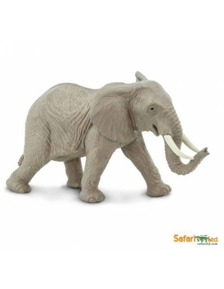 Elefante Africano  Animales Grandes