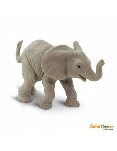 Cría elefante africano