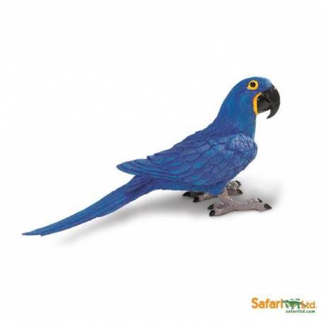 Guacamayo azul  Animales Grandes