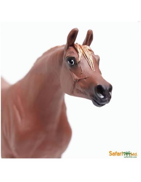 Yegüa Árabe  Animales Grandes