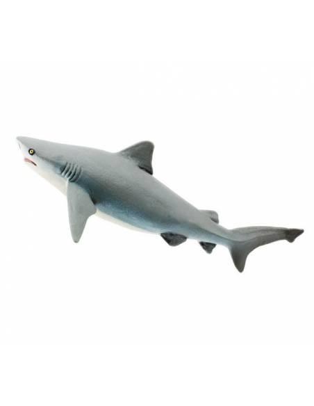 Tiburón  Animales Grandes