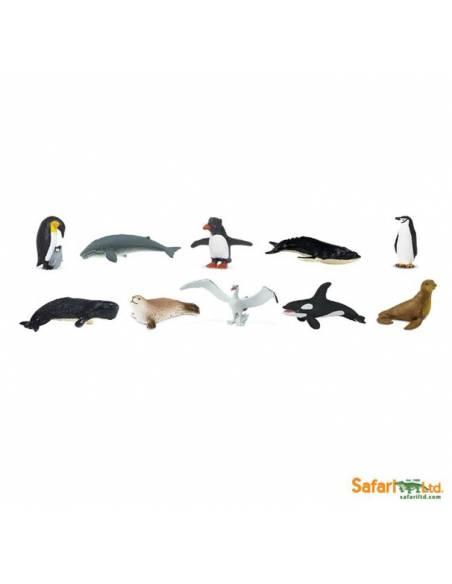Antártida  Toobs Animales