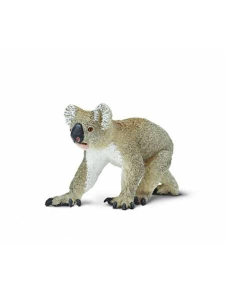 Koala   Animales Grandes