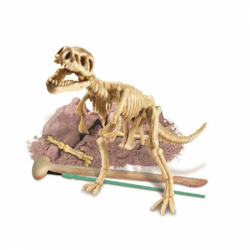 Excavación esqueleto de Tyrannosaurus Rex  Fósiles y minerales