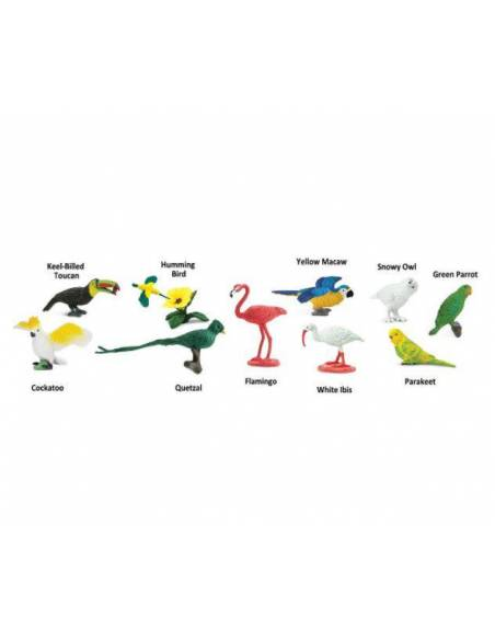 Aves exóticas  Toobs Animales