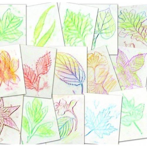 Plantillas de hojas  Manualidades