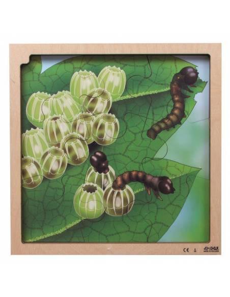 Puzzle de Madera Ciclo de la Mariposa  Puzzles y construcciones