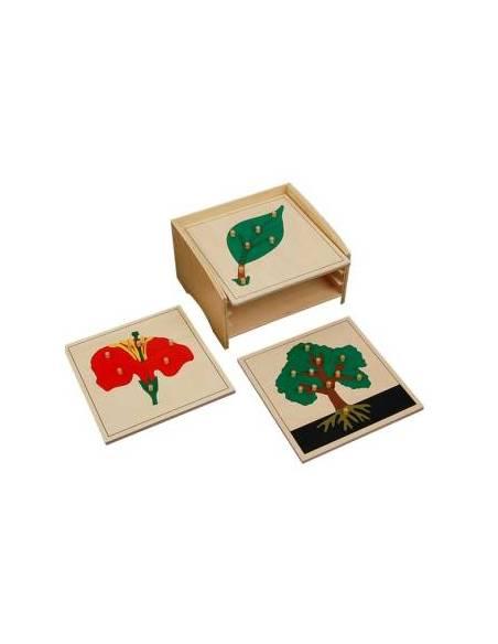 Módulo para tres puzzles  Botánica y Zoología