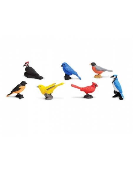 Pájaros del jardín  Toobs Animales