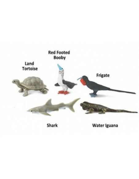 Galápagos  Toobs Animales
