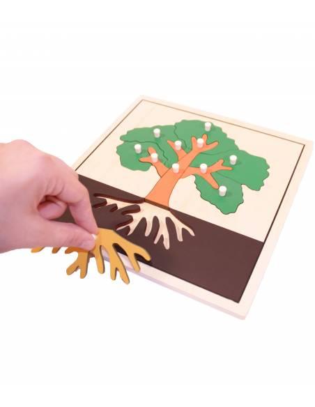 Botánica Montessori
