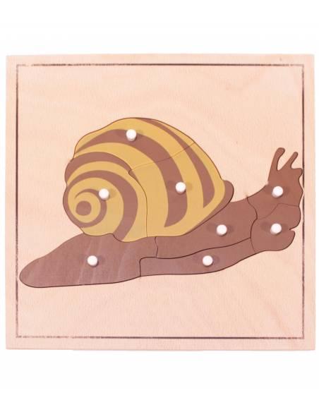 Puzle de madera - Caracol  Botánica y Zoología
