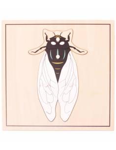 Puzzle mosca