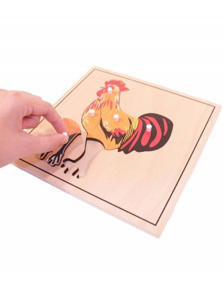 Puzle de madera - Gallo  Botánica y Zoología