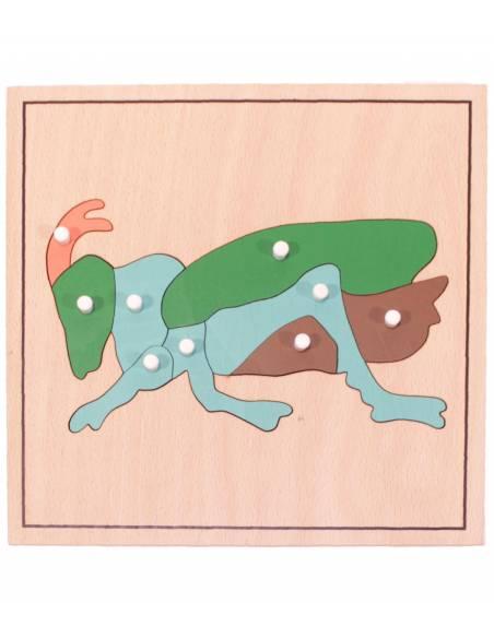 Puzle de madera - Grillo  Material Montessori