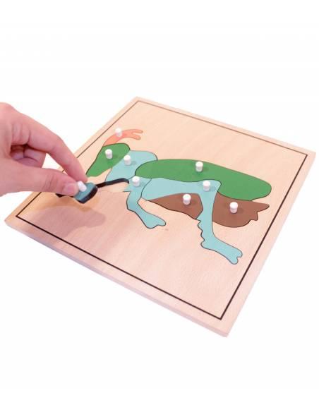 Puzzle Cricket