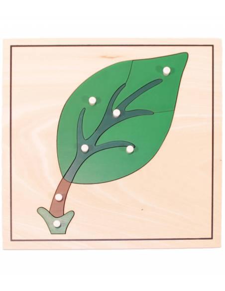 Puzle de madera - Hoja  Botánica y Zoología