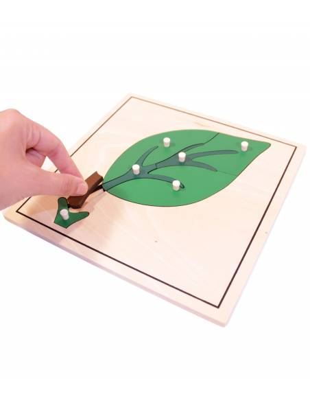 Puzzle leaf