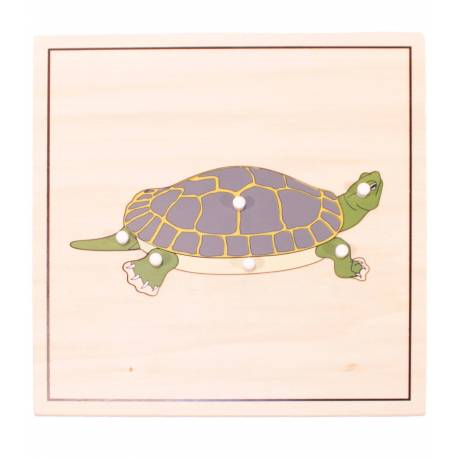 Puzzle Tortuga (esqueleto)