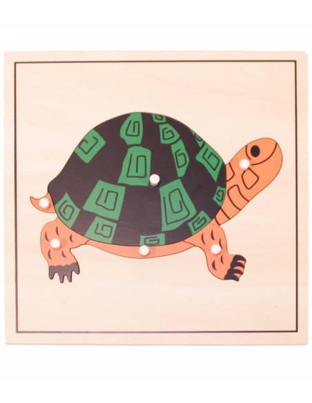 Puzle Tortuga (SIN esqueleto)  Botánica y Zoología