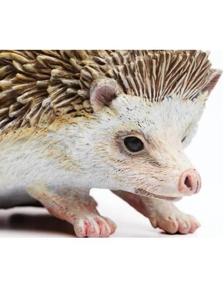 Erizo  Animales Grandes