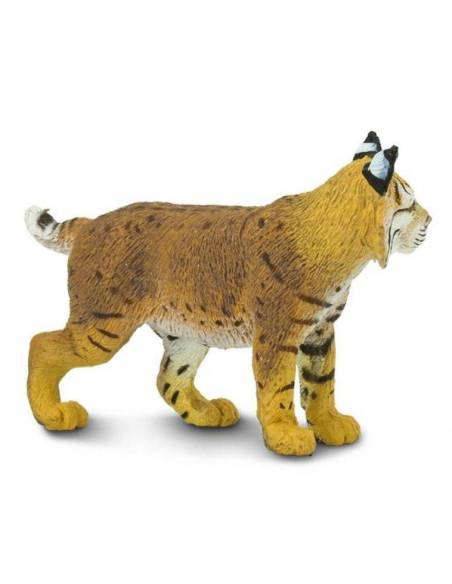 Lince  Animales Grandes