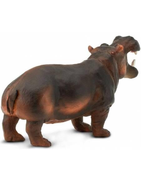 Hipopótamo  Animales Grandes