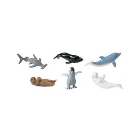 Crías animales marinos
