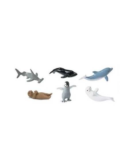 Crías animales marinos  Toobs Animales