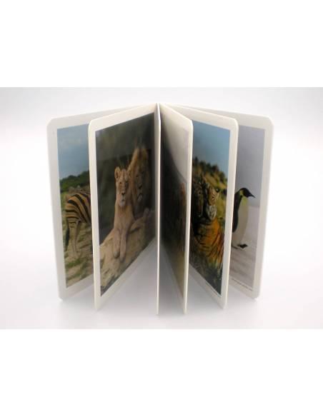 Cuento Imágenes Animales en Familia 2 Cartón  Libros para bebés