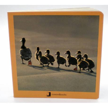 Cuento Imágenes Animales en Familia Cartón  Libros para bebés