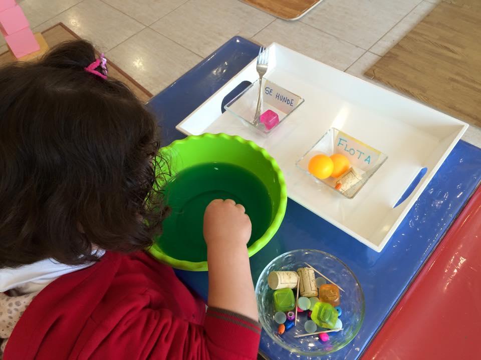 montessori primaria